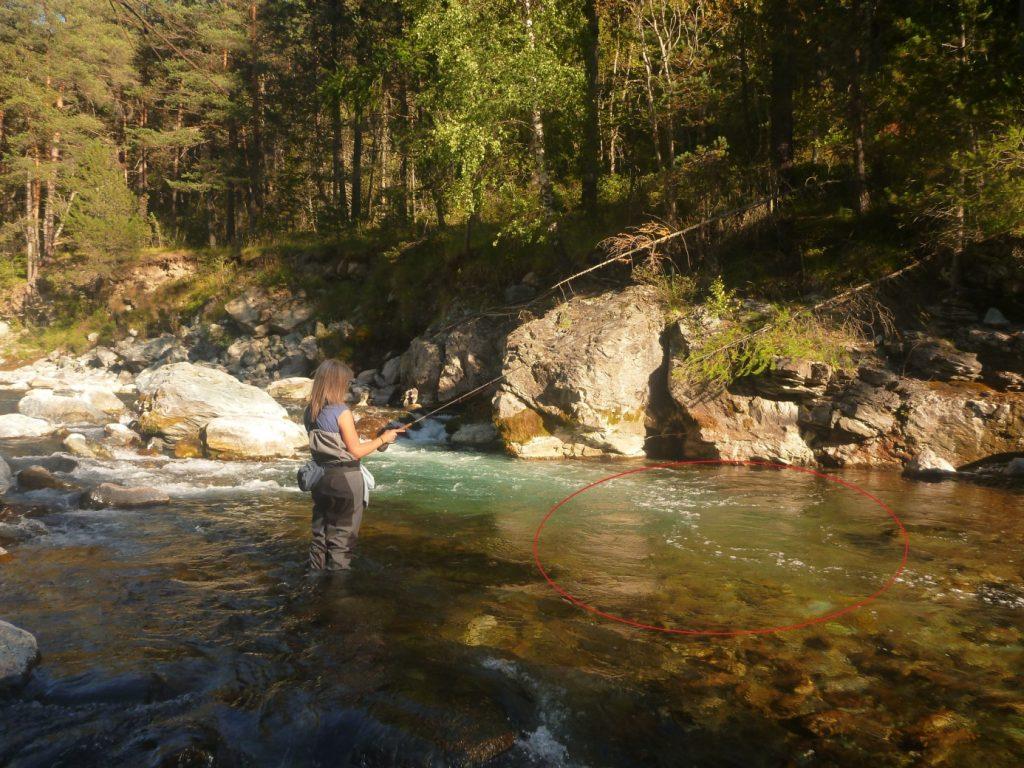 Pêche au Toc repérer et comprendre les postes.4