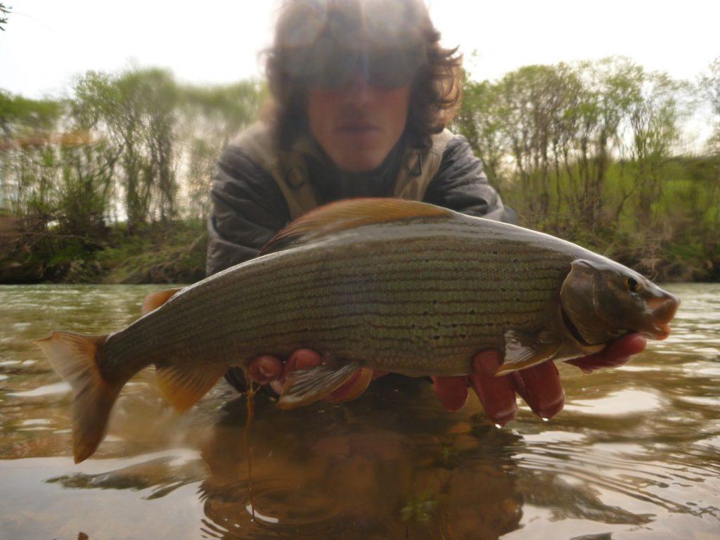 Pêche de Mai 2015 Scodavolpe 3