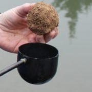 Boule de terre avec fouillis dans coupelle