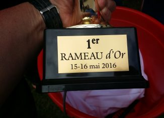 fishabil-peche-au-coup-rameau-dor-20165