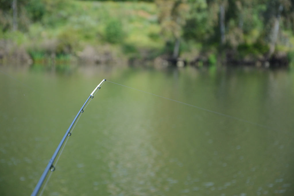 Le scion tubulaire est idéal pour pêcher les gros poissons dans le courant